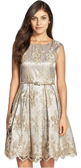Embroidered Lace Fit & Flare